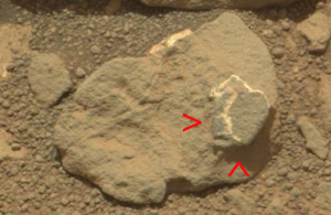 Pas de vraies vacances pour Curiosity dans L'actu curios99e-300x195