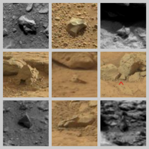 ffspec2-300x300 curiosity