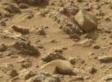 Curiosity : Des morceaux d'une statue sur Mars ?